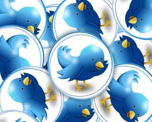 e131b90a2afc1c3e81584d04ee44408be273e4d11db613419cf6_640_twitter